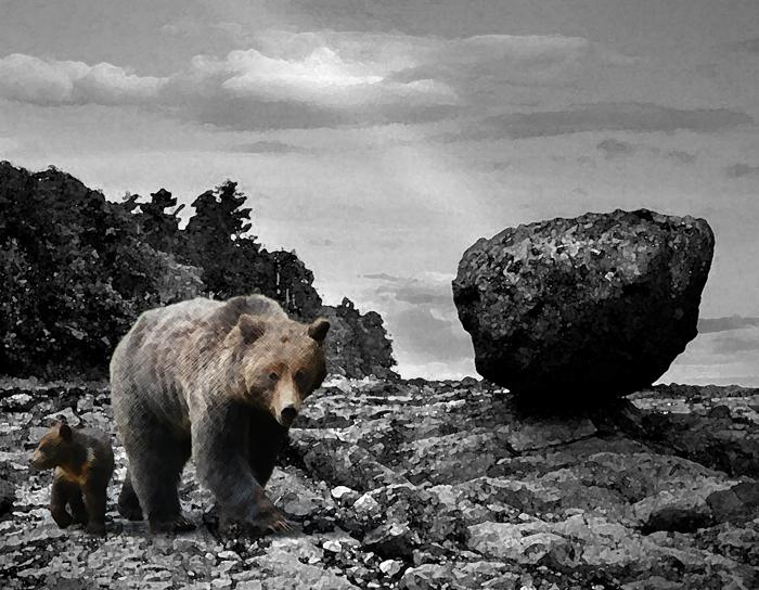 BearsRock.